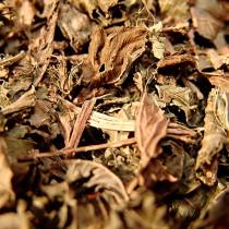 Folhas de Chapéu de Couro a granel - 200g