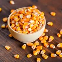 Milho de Pipoca a granel - 100g