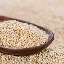Quinoa Grão Branco Orgânico a granel - 100g