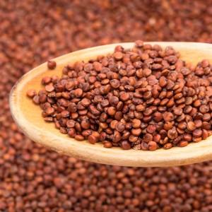 Quinoa Vermelha Grão a granel - 100g